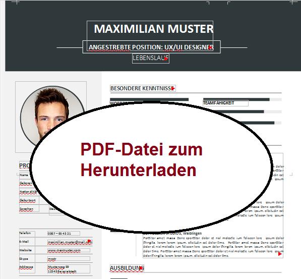 PDF Lebenslauf 1 Bewerbung schreiben